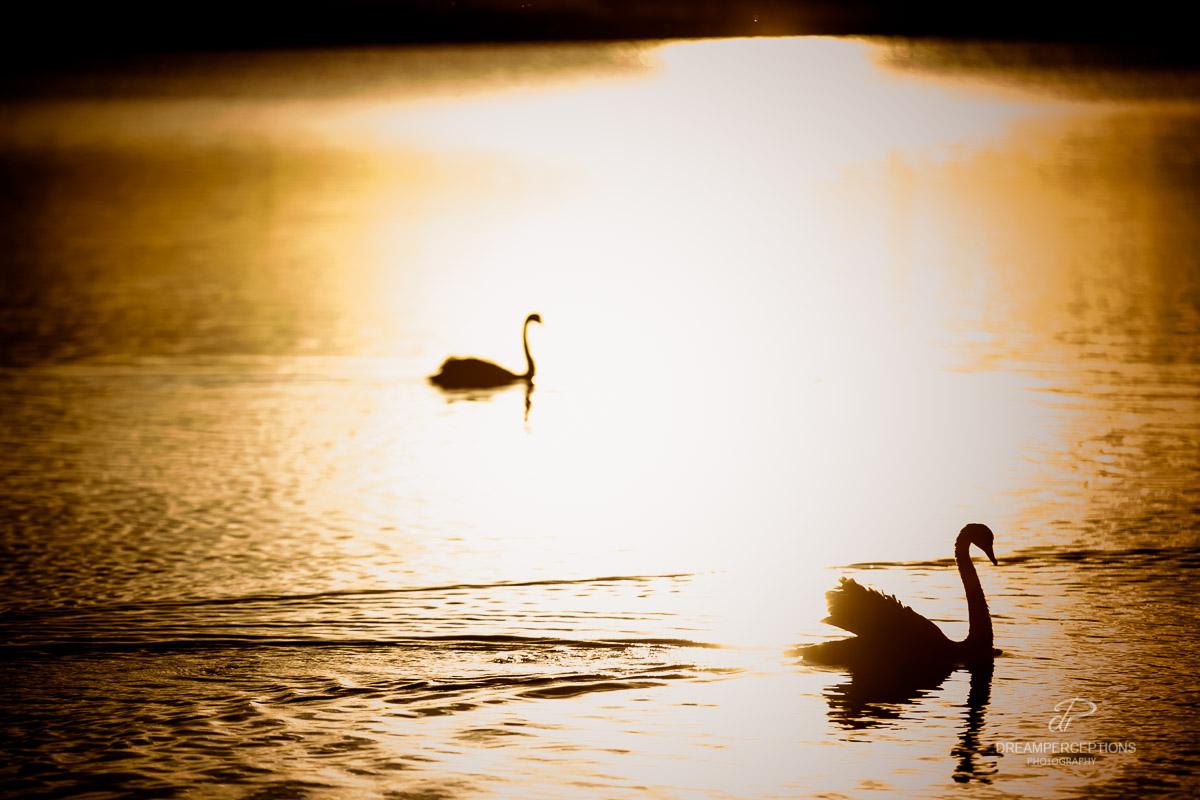 2014_Samara_Lake_0198